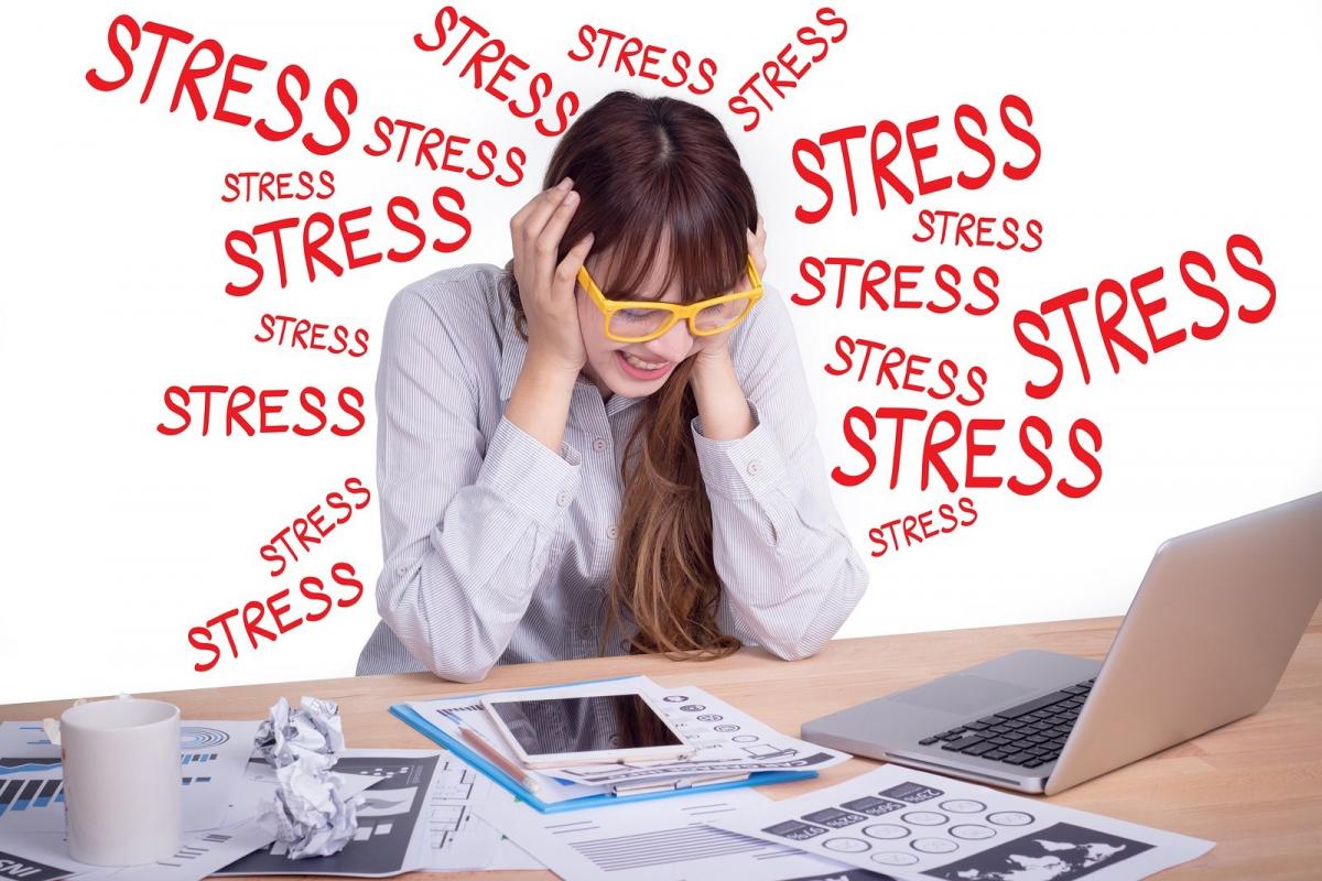 giai-toa-stress-1