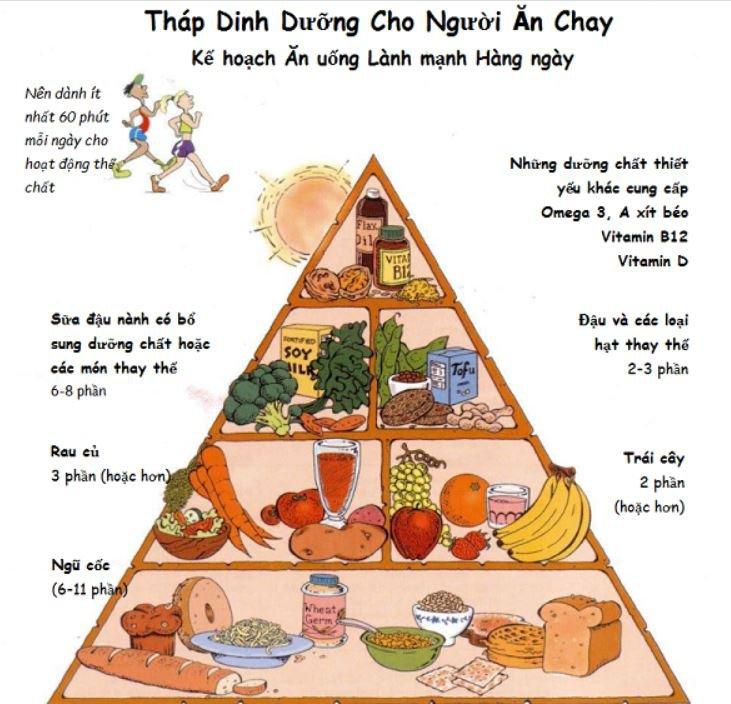 Tháp dinh dưỡng người ăn chay cần biết